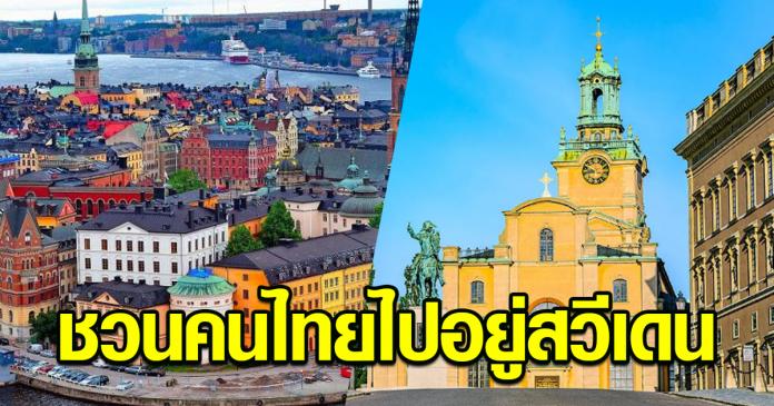 สถานทูตสวีเดน ชวนคนไทยไปอยู่สวีเดน
